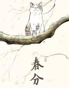 節氣貓壁紙