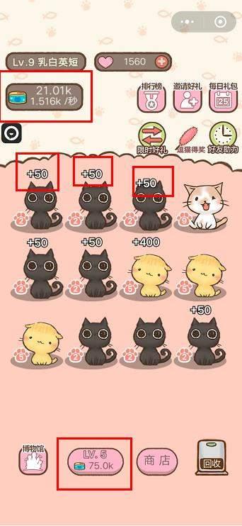 我要猫咪罐头快速获取攻略