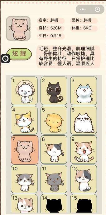我要猫咪第6-10级猫咪品种|名字|属性介绍