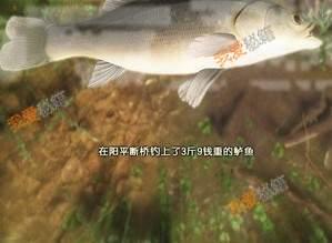 古劍奇譚3鱸魚在哪釣【釣鱸魚地點】