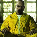绝命毒师:罪犯元素