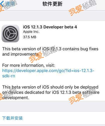 ios12.1.3beta4