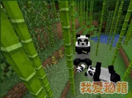 我的世界竹子获取方法介绍