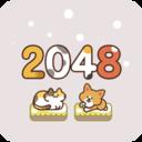 吸猫2048