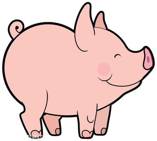 国民养猪赚钱版