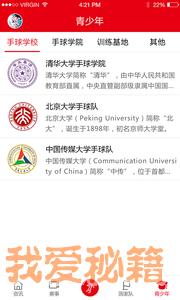中国手球协会图4