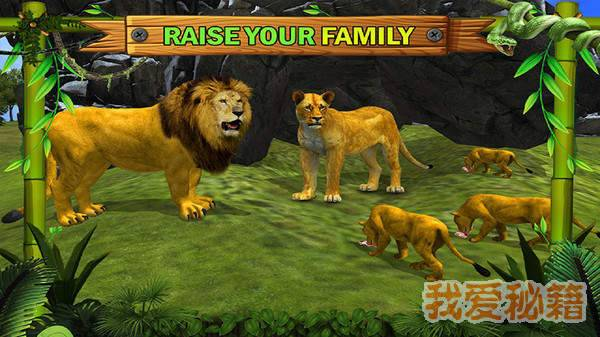 丛林王国:狮子家族图1