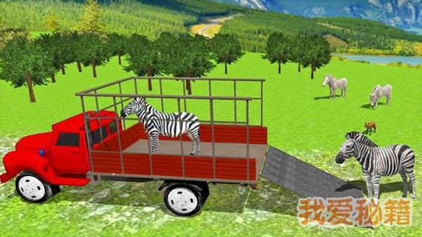城市动物园动物货物运输图2