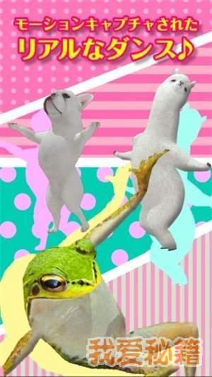 跳舞的羊驼图1