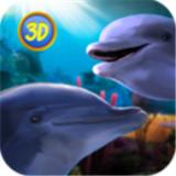 海豚家族模擬器