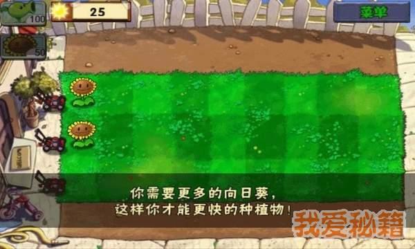 植物大战僵尸无限阳光版图4