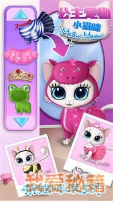 公主宠物小猫咪图4